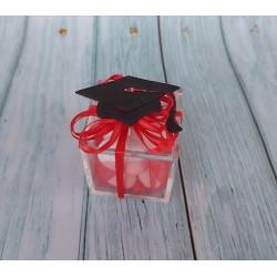 Washi tape Nastro decorativo adesivo carta con fiore rosso e bianco 10m x 1.5cm rotolo fai da te