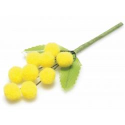Rametto di mimosa...